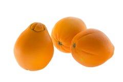 Drei Navel-Orangen Stockbilder