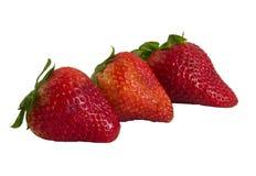 Drei neuer strawberrrys Stockfotos