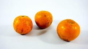 Drei Orangen auf weißem Hintergrund Lizenzfreie Stockbilder