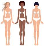 Drei recht jugendlich Mädchen in der Unterwäsche lizenzfreie abbildung