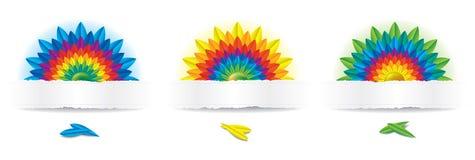 Drei Regenbogen-Blumen Lizenzfreies Stockbild