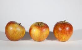 Drei reife Äpfel lizenzfreie stockfotografie