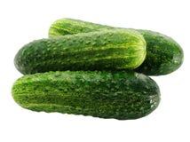 Drei reife grüne Gurken Stockbild