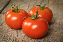 Drei reife Tomaten Lizenzfreies Stockfoto