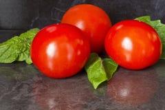 Drei reife Tomaten Stockfotos