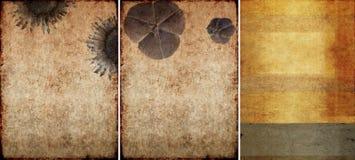 Drei reizende Hintergrundbeschaffenheiten Stockbild