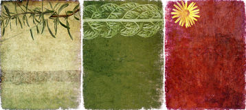 Drei reizende Hintergrundbeschaffenheiten Stockbilder