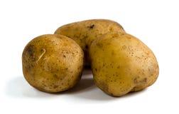 Drei rohe Kartoffeln auf weißem Hintergrund Lizenzfreie Stockfotografie