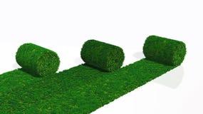 Drei Rollen Grasteppich vektor abbildung