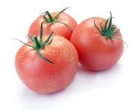 Drei rosafarbene Tomaten mit Tropfen Stockbild