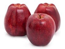 Drei rote Äpfel. stockbilder