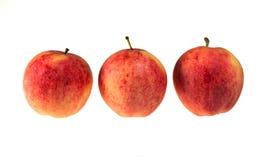 Drei rote Äpfel. Stockfotos
