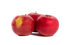 Drei rote Rosen und Äpfel auf einem weißen Hintergrund Lizenzfreie Stockfotos