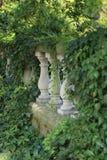 Drei Säulen auf einem Geländer umgeben durch Anlagen und Efeu Lizenzfreies Stockfoto