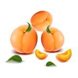 Drei saftige Aprikosen mit Scheiben, auf einem weißen Hintergrund Stockfotografie