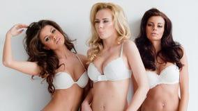 Drei schöne sexy curvaceous junge Frauen stock footage