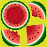 Drei Scheiben einer Wassermelone mit den Steinen, des Ganzen, zwei gebissen und der Wassermelone in einem Schnitt vektor abbildung