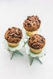Drei Schokoladen-Muffins Lizenzfreies Stockbild