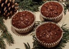 Drei Schokoladensplitterkleine kuchen und ein Kiefernkegel stockbilder