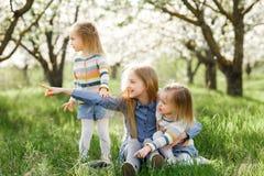 Drei Schwestermädchen, die auf dem grünen Park im Freien spielen Lizenzfreie Stockfotos