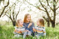Drei Schwestermädchen, die auf dem grünen Park im Freien spielen Lizenzfreies Stockbild