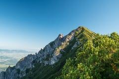 Drei Schwestern und die Schweiz, Österreich und Liechtestein Lizenzfreie Stockfotos