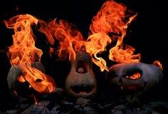 Drei sehr furchtsam und gefährliche Halloween-Kürbise, mit einer Drohung Lizenzfreie Stockbilder