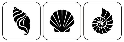 Drei Shells Lizenzfreie Stockfotografie