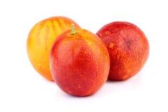 Drei sizilianische rote Orangen auf Weiß Stockbild