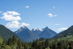 Drei Spitzen stehen in einem Tal in der alpinen Wildnis, Washington, US hoch Stockfotografie