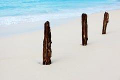 Drei Steuerknüppel auf dem Strand lizenzfreie stockbilder