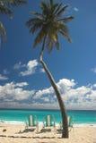 Drei Strandstühle, eine Palme und Wasser des blauen Grüns lizenzfreies stockbild