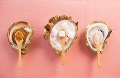 Drei Sugar Dishes mit Sugar Cubes und turbinado Zucker stockfotografie