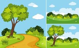 Drei Szenen mit Bäumen und Gras Stockfotos