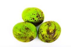 Drei tropische Mangos auf weißem Hintergrund Lizenzfreie Stockfotos