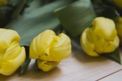 Drei Tulpen auf einem hellen hölzernen Hintergrund Lizenzfreie Stockfotos