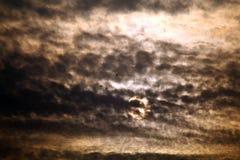 Drei Vögel und dunkle Wolken mit Sonne beleuchten am Sonnenaufgang Stockbilder