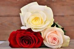 Drei vollerblühte Rosen auf hölzernem Hintergrund Stockbilder