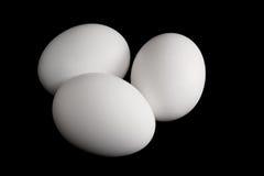 Drei weiße Eier auf schwarzem Hintergrund stockbild