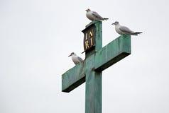 Drei weiße Vögel, die auf dem Kreuz sitzen stockfotografie