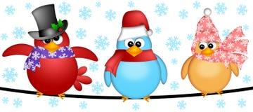 Drei Weihnachtsvögel auf einer Draht-Abbildung Lizenzfreies Stockfoto