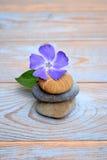 Drei Zensteine auf altem Holz mit purpurroter Blume Stockbild