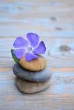 Drei Zensteine auf altem Holz mit purpurroter Blume Stockfotografie