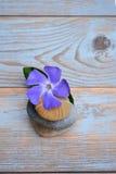 Drei Zensteine auf altem Holz mit purpurroter Blume Lizenzfreies Stockbild
