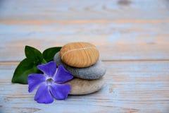 Drei Zensteine auf benutztem Holz mit purpurroten Blumen Lizenzfreies Stockfoto