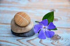 Drei Zensteine auf benutztem Holz mit purpurroter Blume Stockfotografie