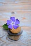 Drei Zensteine auf benutztem Holz mit purpurroter Blume Stockfoto