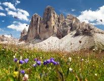 Drei Zinnen oder Tre Cime di Lavaredo Lizenzfreie Stockfotos