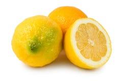 Drei Zitronen Lizenzfreies Stockfoto