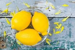 Drei Zitronen in der Glasschüssel auf rustikalem Holz Lizenzfreie Stockfotografie